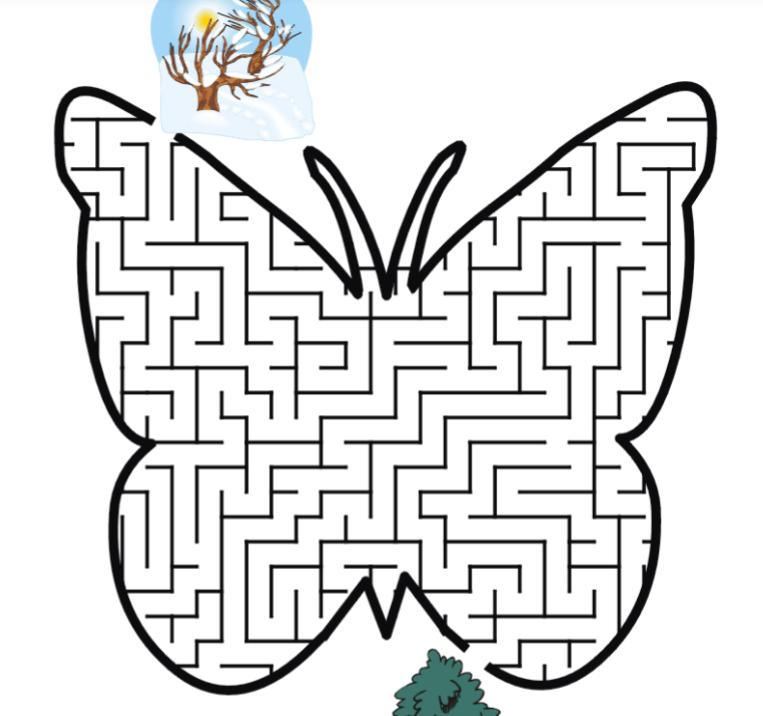 butterfly maze